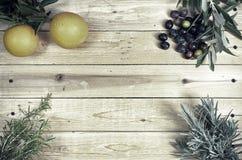典型的地中海植物 库存图片