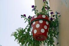 典型的墙壁大农场主罐在安达卢西亚的村庄 免版税库存图片
