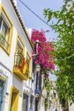 典型的安达卢西亚的街道和阳台有花的在Marbell 免版税库存图片