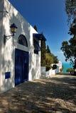 典型的富有的房子在Sidi Bou说 免版税图库摄影