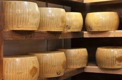 典型的意大利乳酪叫巴马干酪 库存图片