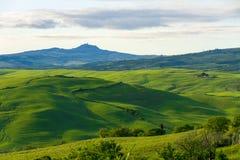 典型的托斯坎美丽的景色 免版税库存照片