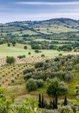 典型的托斯坎风景在意大利 免版税库存图片