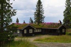 典型的挪威假日房子, hytte 免版税库存图片