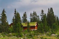 典型的挪威假日房子, hytte 免版税库存照片