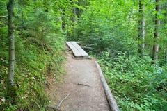 典型的步行在森林露天博物馆在Vydrovo 免版税库存照片