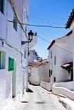 典型的白色安达卢西亚的村庄 库存照片