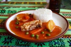 典型的秘鲁膳食用被炖的肉和米,秘鲁 免版税库存照片