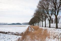 典型的荷兰语开拓地横向在冬天 库存照片