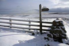 典型的视图冬天 免版税库存图片