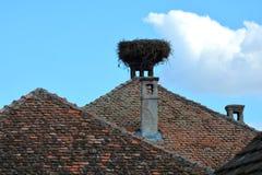 典型的风景在村庄Viscri,特兰西瓦尼亚 免版税库存图片