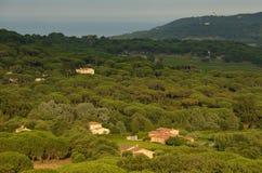 典型的Provencal农村乡下看法由地中海的 库存图片