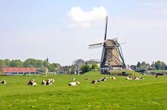 典型荷兰语的横向 库存图片