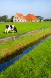 典型荷兰语的横向 免版税图库摄影
