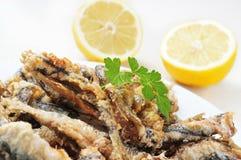 典型西班牙boquerones fritos,被打击的和油煎的鲥鱼 免版税库存图片