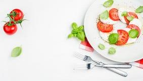 经典意大利人Caprese沙拉用蕃茄、无盐干酪di Buffala和新鲜的蓬蒿 免版税库存照片