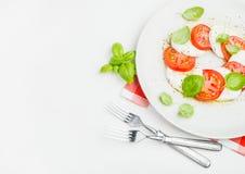经典意大利人Caprese沙拉用蕃茄、无盐干酪di Buffala和新鲜的蓬蒿 库存图片