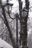 经典灯笼在一个公园在反对积雪的树背景的冬天  库存图片