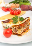 经典牛肉烤宽面条服务 免版税图库摄影