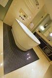 经典设计卫生间倾斜的看法有浴缸,大理石墙壁和versace的启发了橱门 库存图片