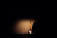 典雅的华美的亲吻在背景o的新娘和时髦的新郎 免版税库存图片