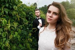 典雅的华美的摆在公园的新娘和时髦的新郎 免版税库存图片