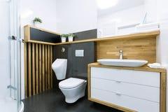 典雅的卫生间 库存图片