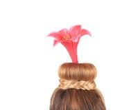 典雅的发型 免版税库存图片