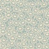 典雅的古色古香的背景406_garden雏菊花 免版税库存照片
