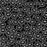 典雅的古色古香的银和黑背景406_garden雏菊开花 免版税库存图片