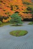 典雅的庭院秋天 库存照片