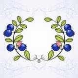 典雅的框架用蓝莓。 库存图片