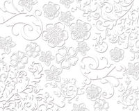 典雅的白色花卉纹理 免版税库存照片