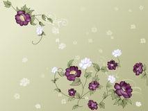 典雅的花卉墙纸 免版税库存图片