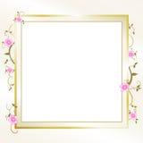 典雅的花卉框架 免版税图库摄影