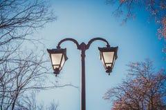 典雅的街灯 免版税库存照片