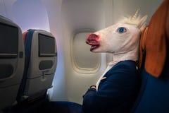 典雅的衣服的异常的乘客坐单独在航空器里面 免版税库存照片