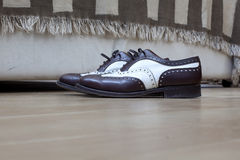 典雅的鞋子 图库摄影