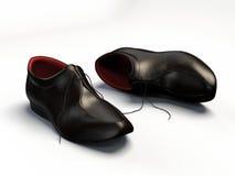 典雅的鞋子 库存照片