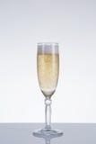 典雅的香槟玻璃 库存照片