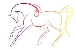典雅的马 向量例证
