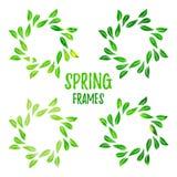 典雅的绿色水彩等高花卉框架 免版税库存照片