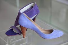 典雅的s穿上鞋子妇女 库存照片