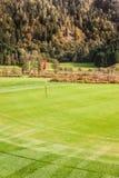 经典高尔夫球孔 免版税库存照片