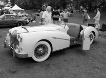 经典20世纪50年代英国sporst汽车 免版税图库摄影