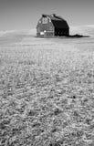 经典黑&白色农厂谷仓裁减秸杆 库存照片
