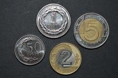 兹罗提硬币擦亮剂金钱pln前方 图库摄影