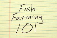 养鱼101在一本黄色便笺簿 免版税图库摄影