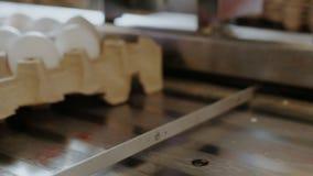 养鸡场排序鸡蛋的禽畜工作者在工厂传动机 股票录像