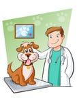 兽医 向量例证